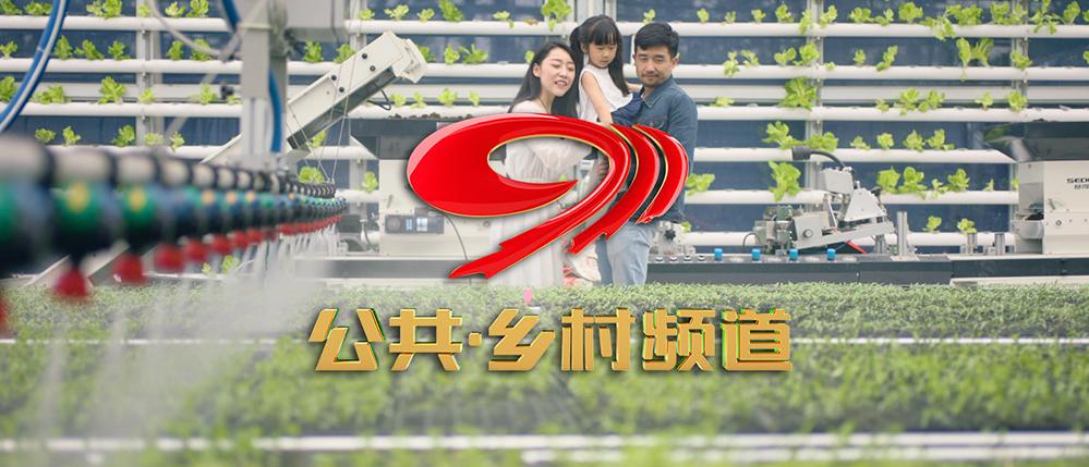 四川卫视公共频道 频道宣传片